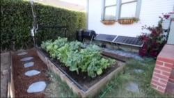 «Фармбот»: урожай без забот