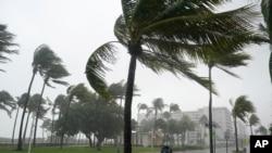 """热带风暴""""埃塔""""造成的暴雨袭击佛罗里达州的迈阿密海滩市(2020年11月8号)。"""