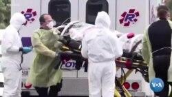 Pandemiya: AQShdagi o'zbekistonliklar o'tgan bir yilni qanday eslaydi?
