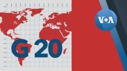 Explainer: G20