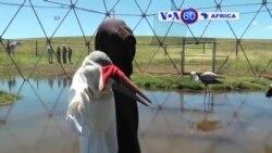 Manchetes Africanas, 16 de Abril de 2015