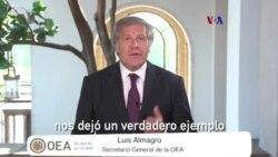 OEA y ONU piden camino democrático en Venezuela