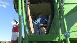 Очікування фермерів від нової торговельної угоди Трампа. Відео