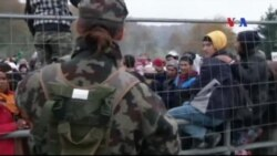 Áo loan báo kế hoạch xây hàng rào dọc biên giới Slovenia