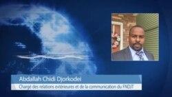 """""""Nous allons marcher sur N'Djamena"""", menacent les rebelles du FNDJT"""
