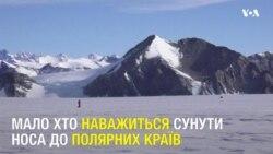В Антарктиді пробігли 21-кілометровий марафон більше півсотні людей. Відео