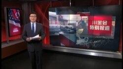 VOA连线(张蓉湘):川金会期间 各方在新加坡的外交努力