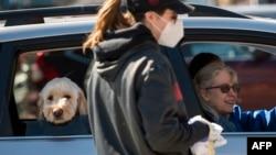 佛吉尼亞州阿靈頓郡工作人員4月3日佩戴耳戴式N95型口罩工作。