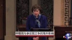 中情局与参议院之争的海外影响