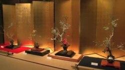 ဂ်ပန္က Ikebana ပန္းအလွျပင္ပညာ