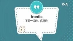 学个词 - frantic
