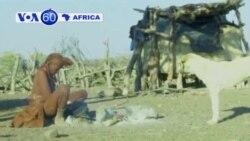 VOA60 África 06 Agosto 2013