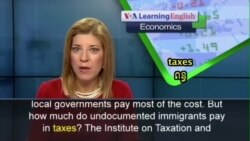 How Much Do Illegal Immigrants Pay in Taxes?
