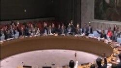安理會一致支持利比亞新一屆聯合政府