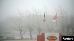 FILE - Fog shrouds a Tyson plant in Burbank, Washington, Dec. 26, 2013. Tyson Foods suspended operations Wednesday at an Iowa plant over a massive coronavirus outbreak.