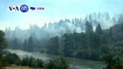 ABŞ-ın qərb ştatlarında meşə yanğınları dözülməz həddə çatıb