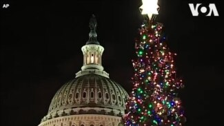 Thắp sáng cây thông Giáng sinh ở Điện Capitol