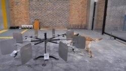 Afrique du Sud : Des chiens entraînés pour détecter le Covid-19 dans les aéroports