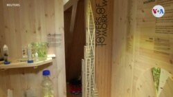 ECOLOGÍA: Rascacielos de madera bloquea CO2
