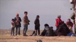 Families Flee Aleppo for Kurdish Regions in Syria