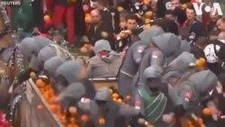 Lễ hội ném cam ở Ý