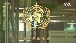 多國提照會挺台參加世衛大會 WHO稱總幹事無權決定