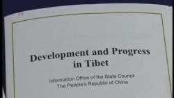 習近平政府人權紀錄在聯合國審議時遭批評