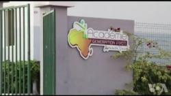 Les champions football junior du Sénégal couronnés par leurs pairs (vidéo)