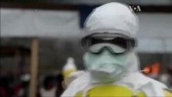 Як зупинять Еболу розповіли в ВООЗ