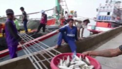 Abuses Persist in Thailand's Fishing Industry