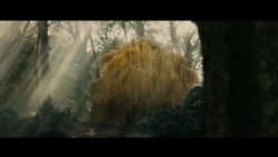Cine: Into the Woods
