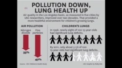 Research Links Cleaner Air, Improved Children's Health
