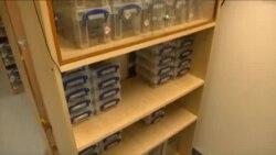 Otrovima insekata protiv super-mikroba i raka
