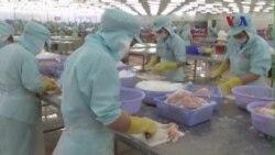 Cựu Bộ trưởng Thương mại: TPP có thể gây thiệt hại lớn cho Việt Nam