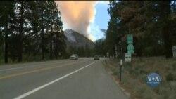 Масштабні лісові пожежі, які вирують на Західному узбережжі США, лише посилюються. Відео