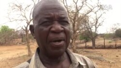 'Umsebenzi Wokugebha Idamu leTuli-Manyame Umi Mpo'