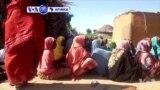 VOA60 Afirka: Mayakan Boko Haram Sun Kashe Mutane 7 A Cikin Wani Kauye Dake Arewa Maso Gabashin Kasar