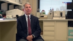 National Institute of Allergy and Infectious Diseases Director Anthony Fauci, M.D.