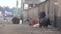 وضعیت دشوار زندگی معتادان در فصل زمستان در هرات