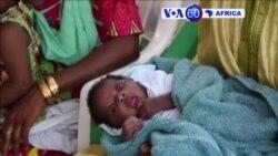 Manchetes Africanas 2 Dezembro 2015