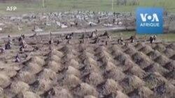 Un maire ukrainien fait creuser des tombes pour inciter au confinement