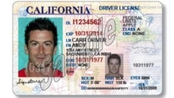 Illegal Immigrants Can Now Get a Driver's License