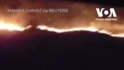 В Південній Каліфорнії родина зняла на відео лісову пожежу поблизу автостради. Відео