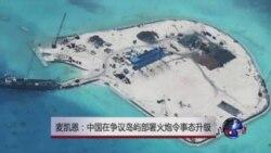 麦凯恩:中国在争议岛屿部署火炮令事态升级
