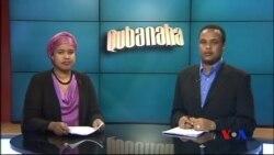Qubanaha VOA, Nov. 6, 2014