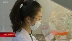 Khoa học gia TQ phát hiện kháng thể chống corona