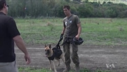 Dogs Help Sniff Out Poachers in South Africa
