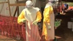 Ébola Brantley