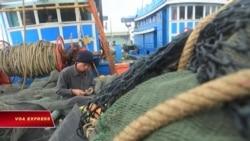 TQ: Hà Nội 'không có quyền ý kiến' về lệnh đánh cá ở Biển Đông