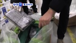 VOA60 DUNIYA: Poland Yan Sanda Sun Kama Hodar Iblis Ta Cocaine Mi Nauyin Kilo 176, Diamba 21, 2015